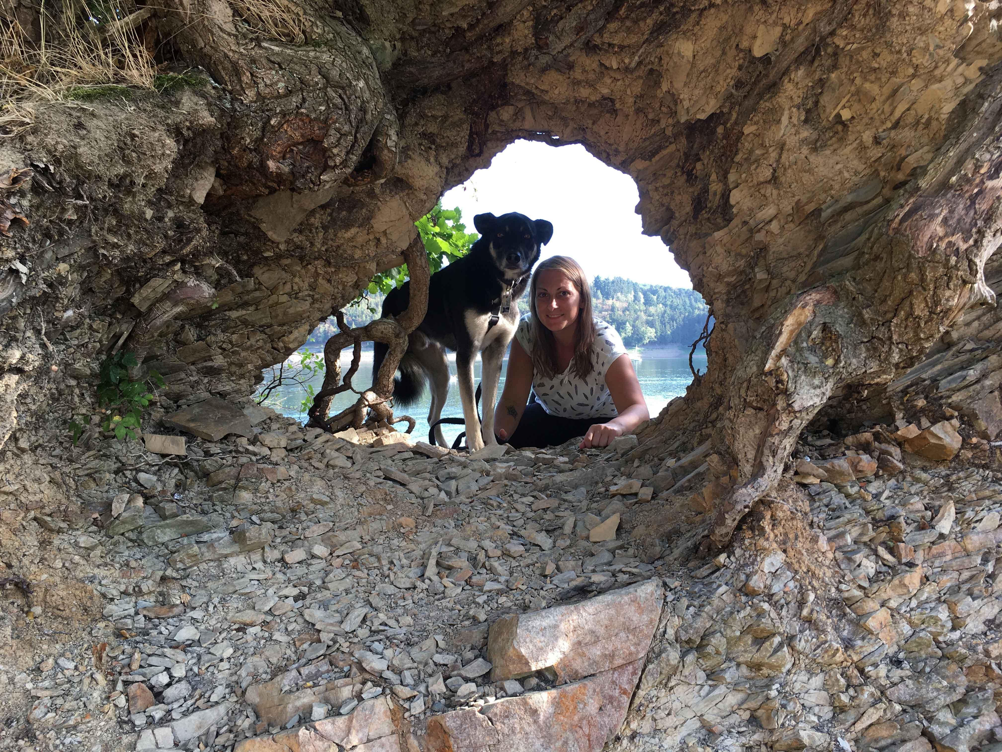 Hi, ich bin Anni und freue mich, dass Du hier bist. Auf diesem Blog dreht sich alles rund um tierische Helfer. Du lernst die verschiedenen Einsatzbereiche kennen und bekommst persönliche Erfahrungsberichte zu lesen und zwar nicht nur von mir.